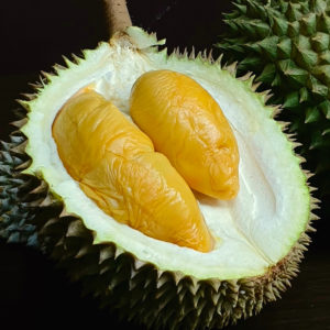 D13 | Durian Express Delivery