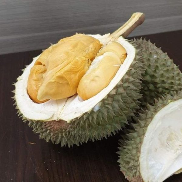 Durian Delivery Service 4 | Durian Express Delivery