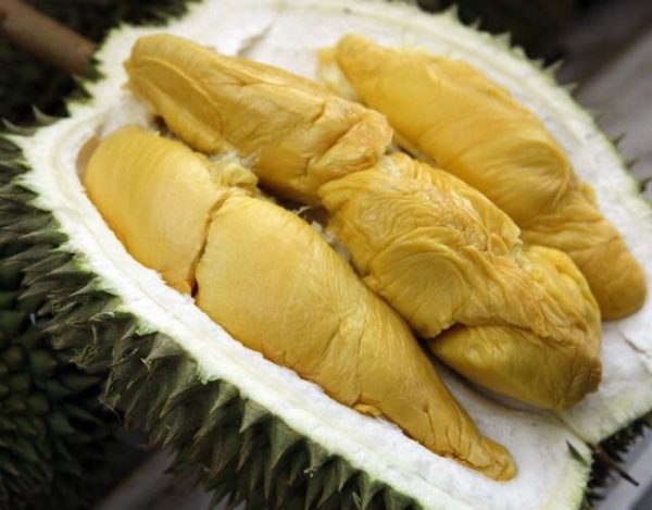 Ready to Eat Durian Delivery | Durian Express Delivery
