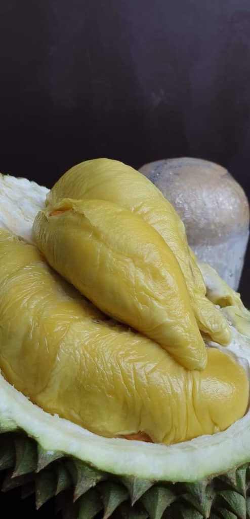 Hougang Durian   Durian Express Delivery