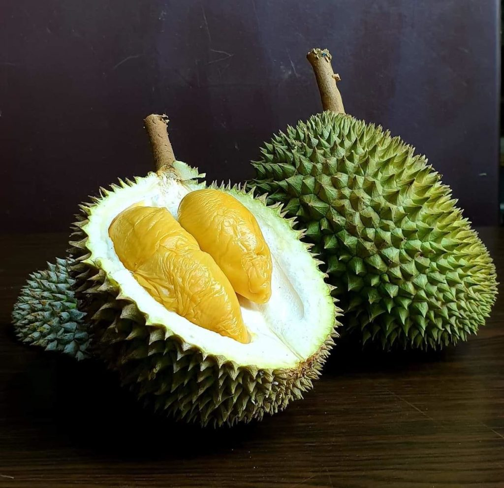 Order Durian Online - Durian Express Delivery SG